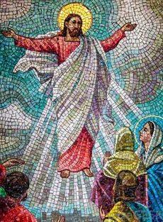 mosaic company in delhi