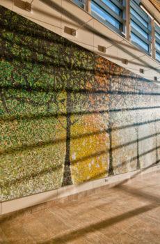 hospital lobby mosaic tile