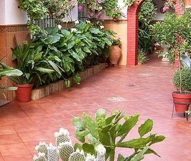 terracotta tiles in delhi